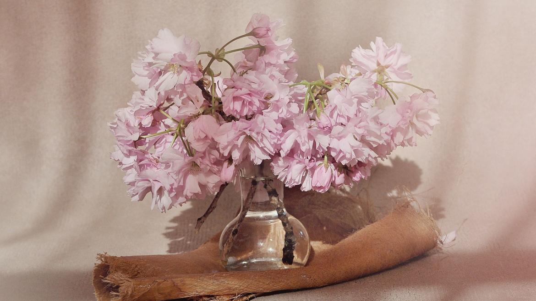 flowers-1369124_1280-copia.jpg