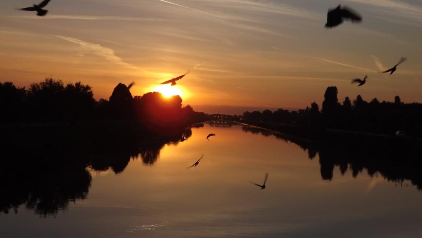 VibrAzioni: Arriva il nuovo sole